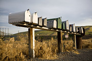 Mail Box Framed Prints - Row of mailboxes, Palouse, Washington Framed Print by Paul Edmondson