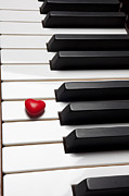 Musical Photos - Row of piano keys by Garry Gay