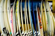 Ashore Framed Prints - Row of Surfboards Framed Print by Ray Laskowitz - Printscapes