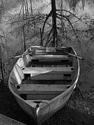 Indiana Photography Posters - Rowboat and Tree Poster by Michael L Kimble