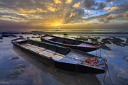 Singer Photos - Rowboats at Dawn by Debra and Dave Vanderlaan