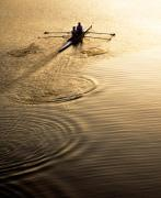 Rowers Photos - Rowers at Sunset by Marilyn Hunt
