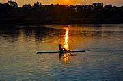 Row Boat Digital Art Prints - Rowing at Sunset 2 Print by Bill Cannon