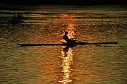 Row Boat Prints - Rowing at Sunset 3 Print by Bill Cannon