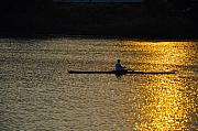 Rowing At Sunset Print by Bill Cannon