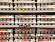 Grocery Store Prints - Rows of Egg Cartons on Display Print by David Buffington