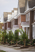 Cookie Prints - Rows Of New Townhomes Print by Roberto Westbrook