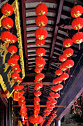 Oil Lamp Photo Originals - Rows of red Chinese paper lanterns - Shanghai China by Christine Till