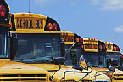 Buses Prints - Rows of School Buses Print by Skip Nall
