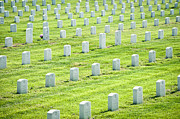 Grave Site Prints - Rows of War Graves Print by Dave & Les Jacobs