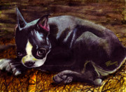 Pooch Paintings - Roxanne - Boston Terrier by Jean-Marie Poisson