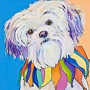 Maltese Dogs Framed Prints - Roxie Framed Print by Pat Saunders-White