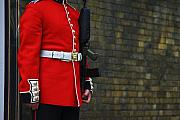 Military Uniform Art - Royal British Guard by Nila Newsom