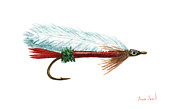 Fishing Flies Paintings - Royal Coachman Mickey Fin by Sean Seal