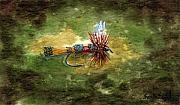 Fly Fishing Art - Royal Coachman by Sean Seal