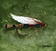 Fishing Flies Paintings - Royal Coachman Wet Fly by Sean Seal