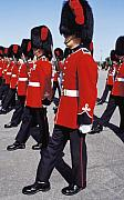 Uniforms Prints - Royal Guards in Ottawa Print by Carl Purcell