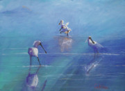 Spoonbill Paintings - Royal Spoonbills foraging by Colin L Williams