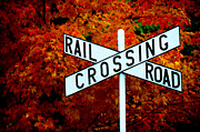 Frank Digiovanni Metal Prints - RR Crossing Metal Print by Frank DiGiovanni