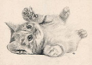 Parchment Drawings Prints - Rub my belly Print by Bianca Ferrando