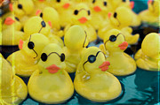North Carolina State Fair Prints - Rubber Ducks Print by Kim Fearheiley
