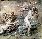 Goddess Birth Art Prints - Rubens: Venus Print by Granger