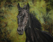 Black Horse Pastels Prints - Rubina - Spirit of my soul Print by Sabine Lackner