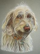 Cute Dog Pastels - Ruby by Lucy Deane