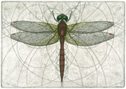 Flying Mixed Media Posters - Ruby Meadowhawk Dragonfly Poster by Charles Harden