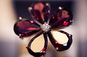 Jenny Rainbow - Ruby Ring I. Spirit of Treasure