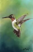 Ruby Throated Hummingbird Print by Charlotte Yealey