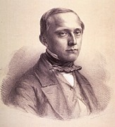 Rudolph Prints - Rudolph Virchow 1821-1902, German Print by Everett