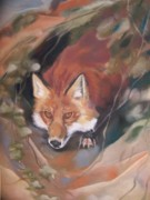 Fox Pastels Prints - Rudy adult Print by Marika Evanson