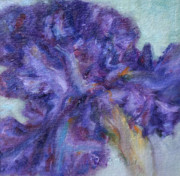 Quin Sweetman Paintings - Ruffled by Quin Sweetman