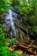Large Leaves Posters - Rufus Morgan Falls Poster by Debra and Dave Vanderlaan