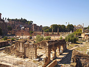 Sight Seeing Photos - Ruins. Roman Forum. Rome by Bernard Jaubert
