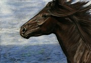 Black Horse Pastels Prints - Run Free Print by Sheri Gordon