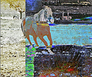 Expressionist Equine Framed Prints - Run Fun Run Fun Framed Print by Lenore Senior and Dawn Senior-Trask