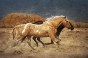 Equine Digital Art Posters - Running Free Poster by Heather Swan