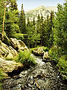 Colorado Stream Posters - Running River Poster by Marilyn Hunt
