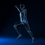 Sprinting Prints - Running Skeleton, Artwork Print by Sciepro