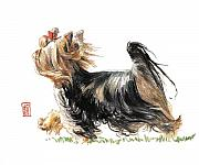 Pet Portraits Paintings - Running Yorkie by Debra Jones