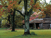 Old Barn Posters - Rural Barn Fall South Carolina Landscape Poster by Kathy Fornal