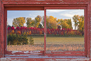 Fall Photos Framed Prints - Rural Country Autumn Scenic View Framed Print by James Bo Insogna