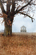 Vintage House Prints - Rural Farmhouse and Large Tree Print by Jill Battaglia