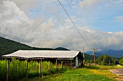 Susan Leggett Acrylic Prints - Rural Highways and Biways Acrylic Print by Susan Leggett