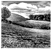 Linocut Art - Rural Landscape, Woodcut by Gary Hincks
