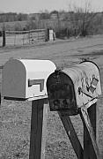 Mail Box Photo Metal Prints - Rural Route Metal Print by Jame Hayes