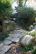 Central Park Digital Art Prints - Rural Steps Print by Rob Hans