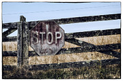 Stop Sign Photos - Rural Stop by James Bull